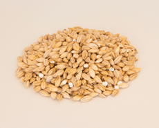 Best Acidulated Malt